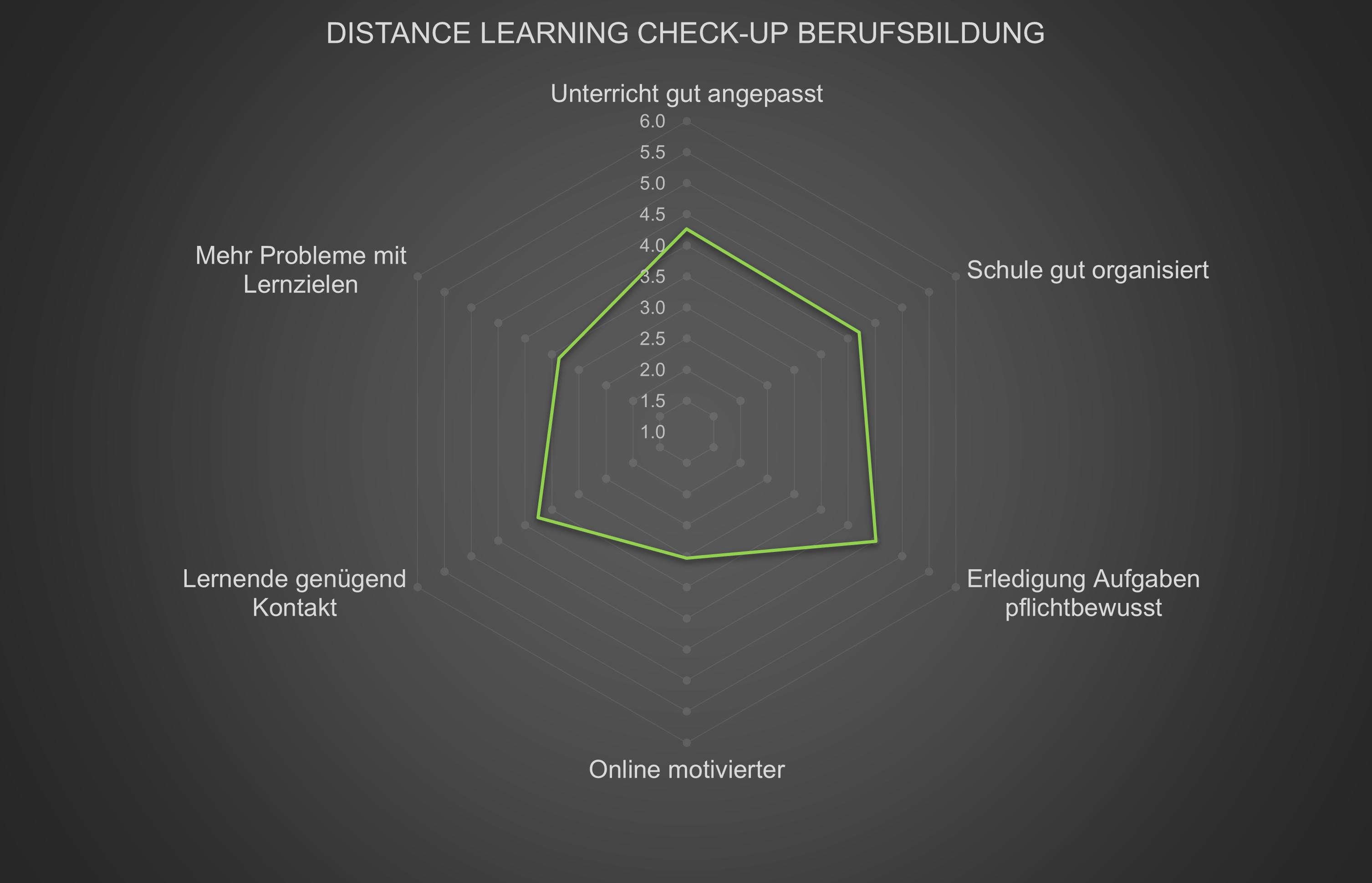 Distance Learning Check-up Berufsbildung Spidergrafik